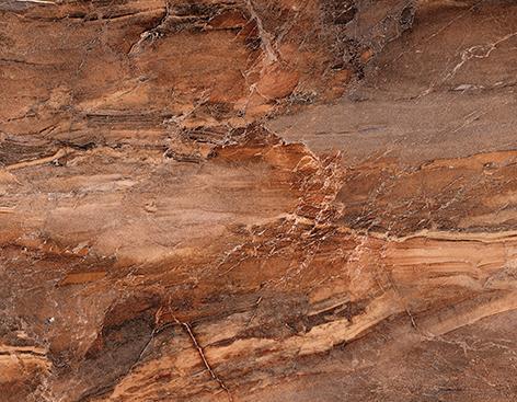 Плитка настенная Trevi Cersanit: Trevi Плитка настенная коричневая (TYN111D) 30x45